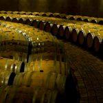 Arjantin Şarap Üretimi