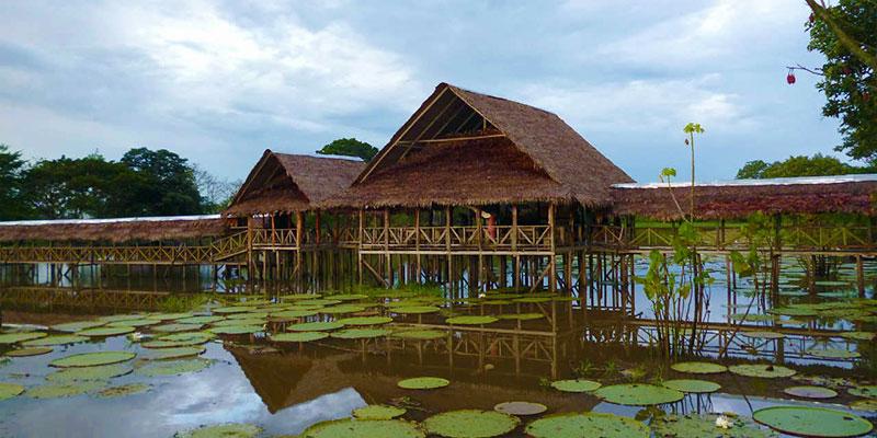 Kolombiya Amazon Gezi Rehberi
