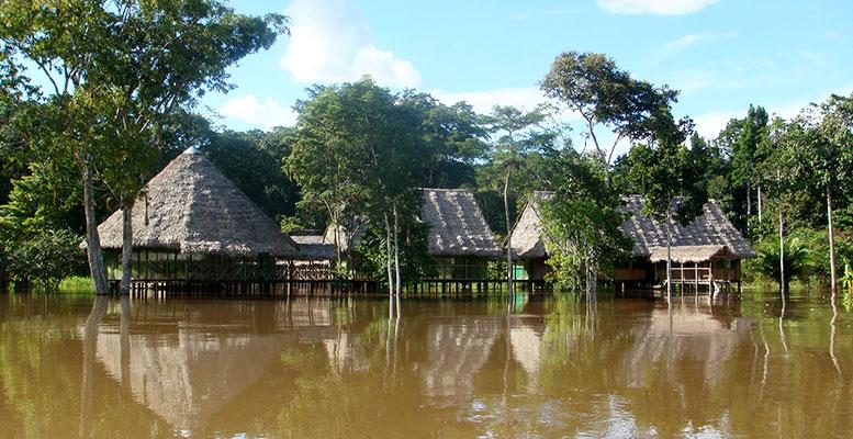 Amazon Iquitos Seyahat Rehberi