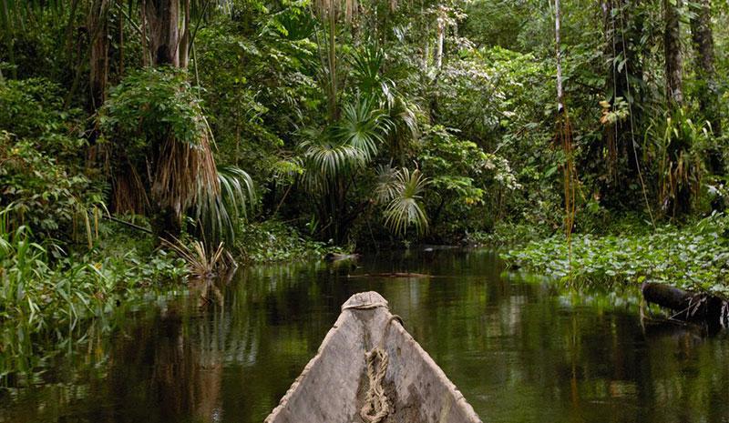 Yasuni Ulusal Parkı Nerede