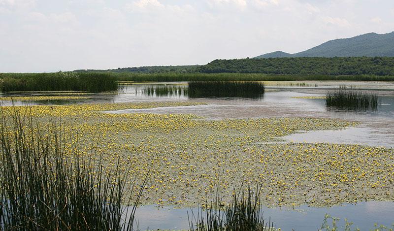 Enez Gala Gölü
