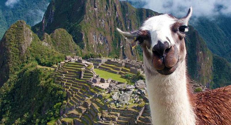 Machu Picchu Tur Fiyatları