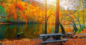 Yedigöller Milli Parkı Bolu