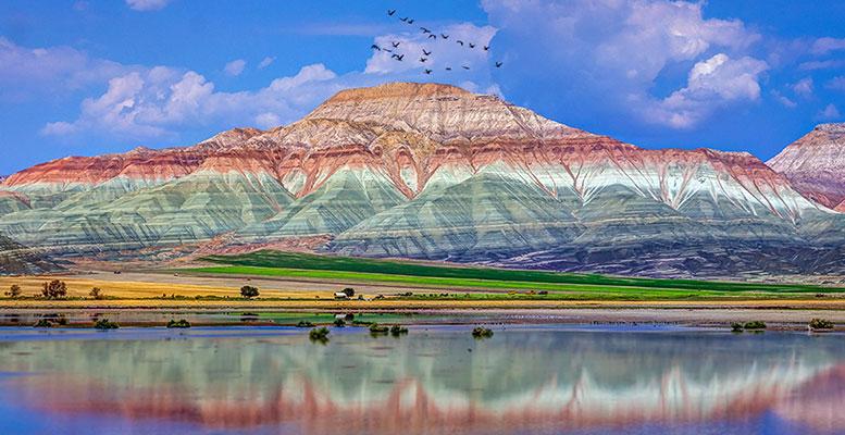 Ankara Nallıhan Kuş Cenneti
