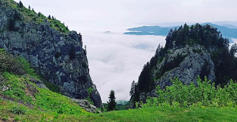 Trabzon Kuruçam Yaylası