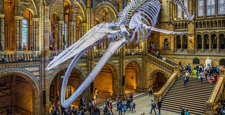 Londra'nın En Güzel Müzeleri
