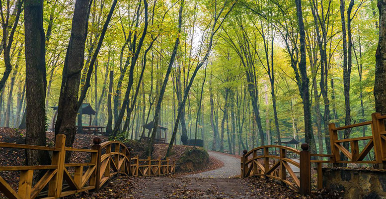 Belgrad Ormanları İstanbul